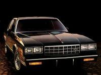 Chevrolet Monte Carlo, 4 поколение [2-й рестайлинг], Тарга, 1983–1985