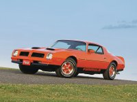 Pontiac Firebird, 2 поколение [2-й рестайлинг], Formula купе, 1976–1977