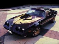 Pontiac Firebird, 2 поколение [4-й рестайлинг], Trans am t-roof тарга, 1979–1981