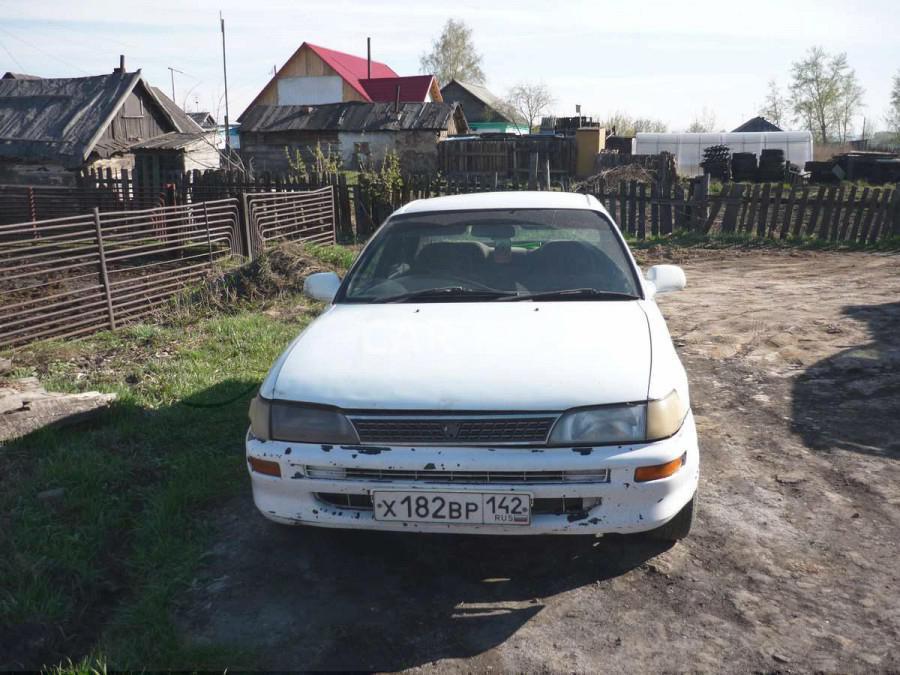 Toyota Corolla, Белово