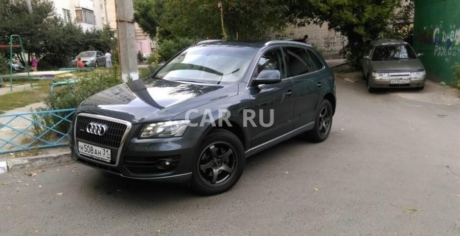 Audi Q5, Белгород