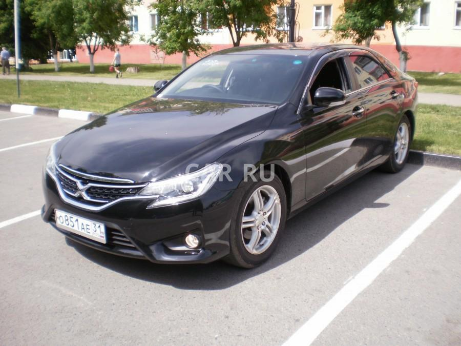 Toyota Mark X, Белгород