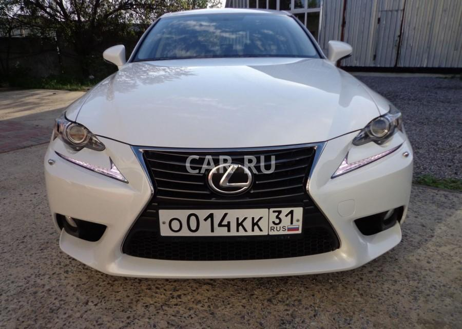 Lexus IS, Белгород