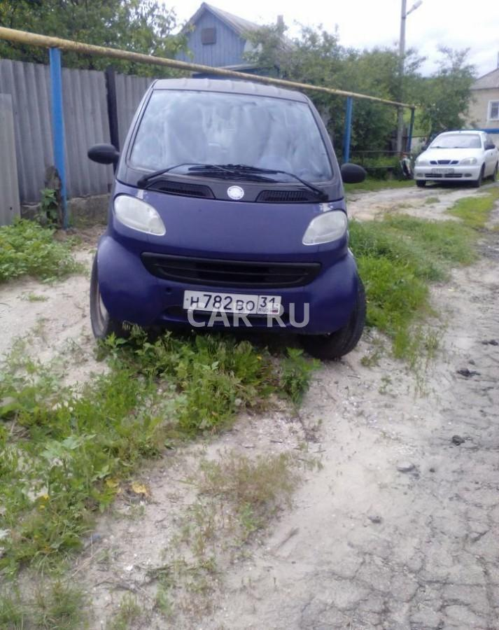 Smart Fortwo, Белгород
