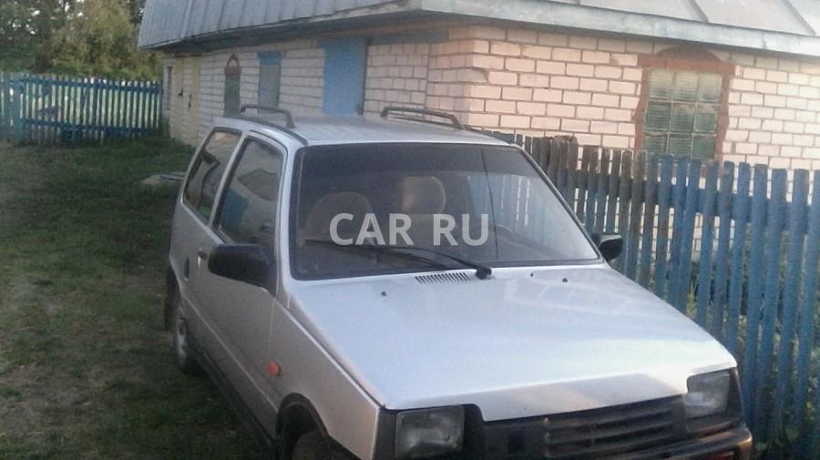 Lada 1111 Ока, Актаныш