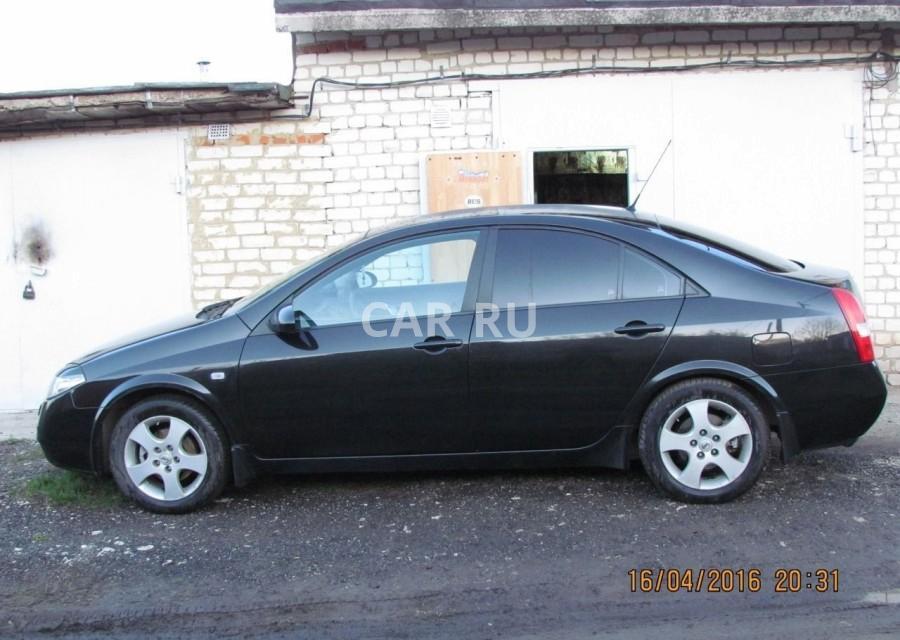 Nissan Primera, Белгород