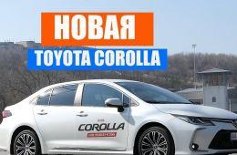 Toyota Corolla 2019 - 2020