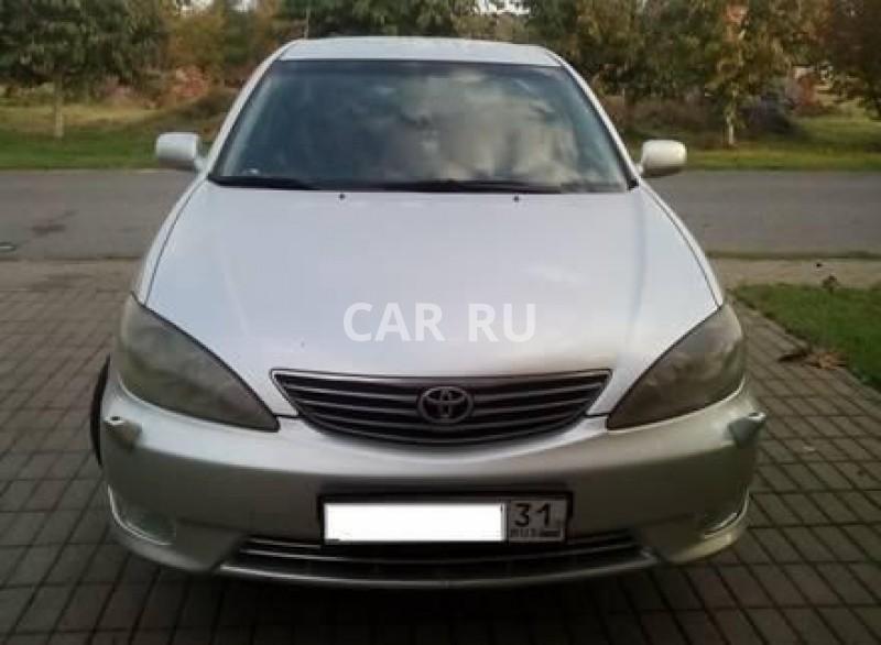 Toyota Camry, Белгород