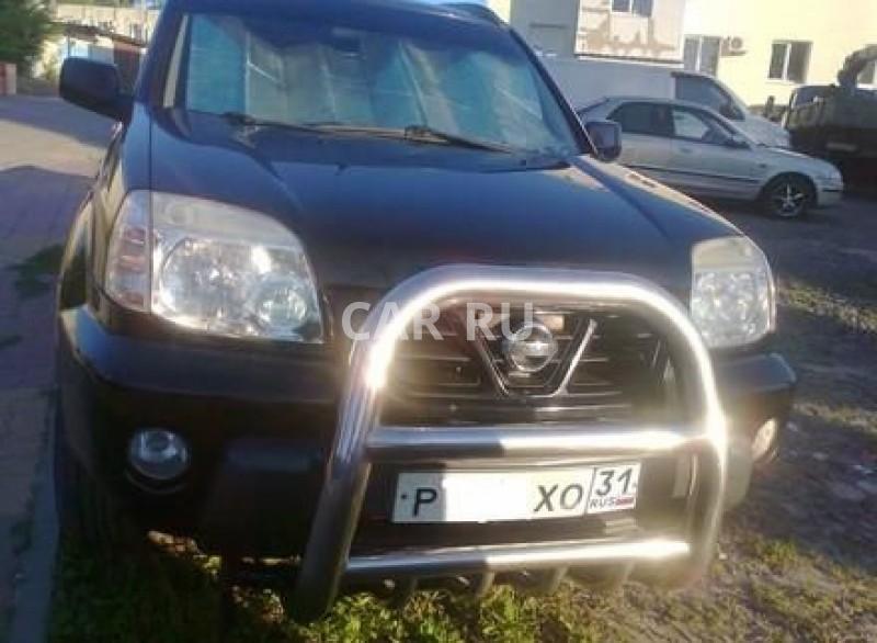Nissan X-Trail, Белгород