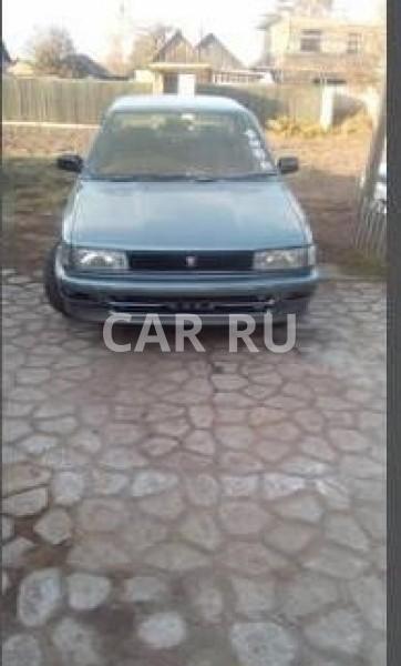 Toyota Corolla, Белогорск