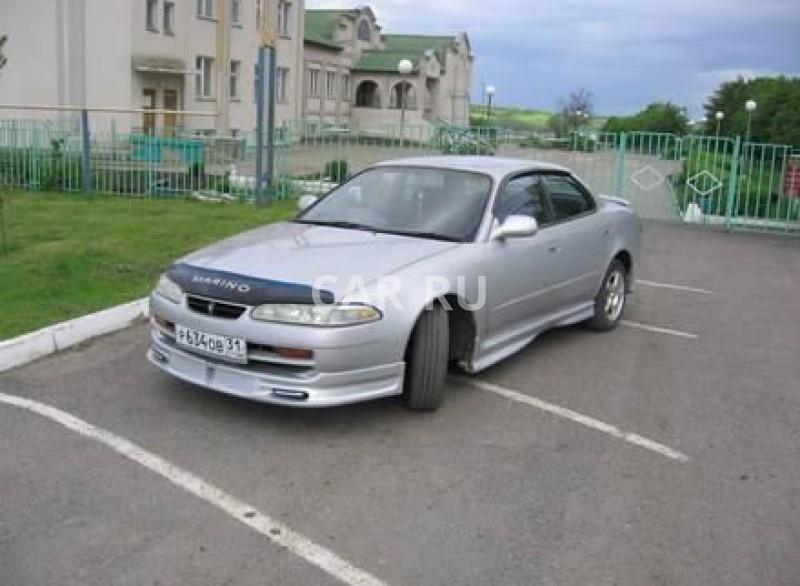 Toyota Sprinter Marino, Белгород