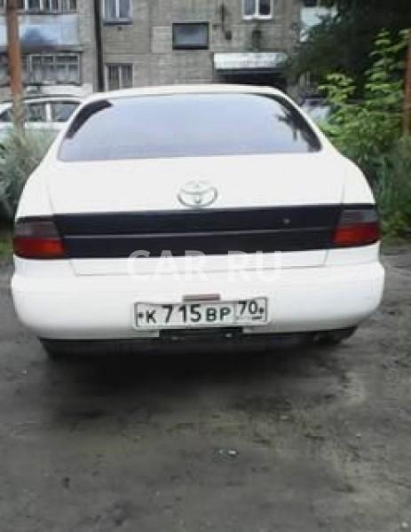 Toyota Corona, Асино