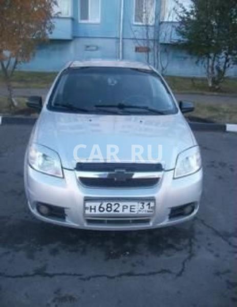 Chevrolet Aveo, Белгород
