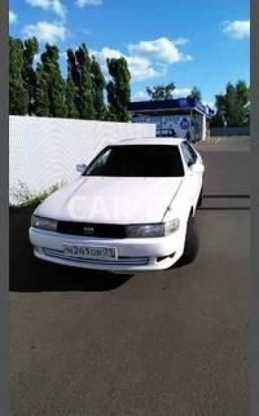 Toyota Cresta, Белгород