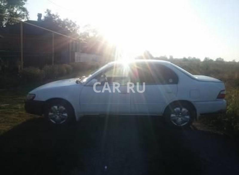 Toyota Corolla, Азов