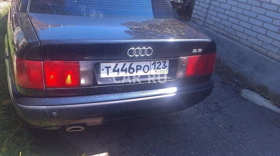 Audi 100, Батуринская