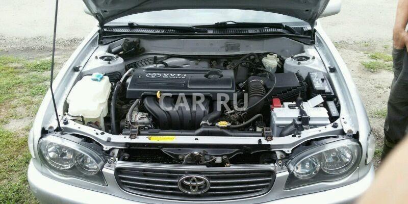 Toyota Corolla, Балашов