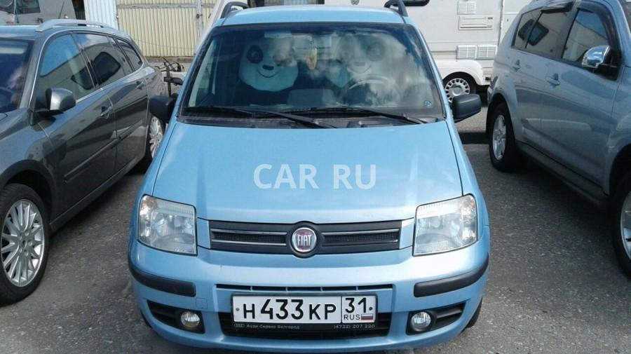 Fiat Panda, Белгород