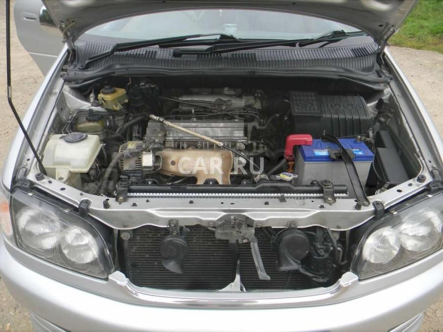 Toyota Ipsum, Арсеньев