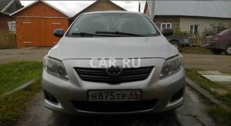 Toyota Corolla, Антропово