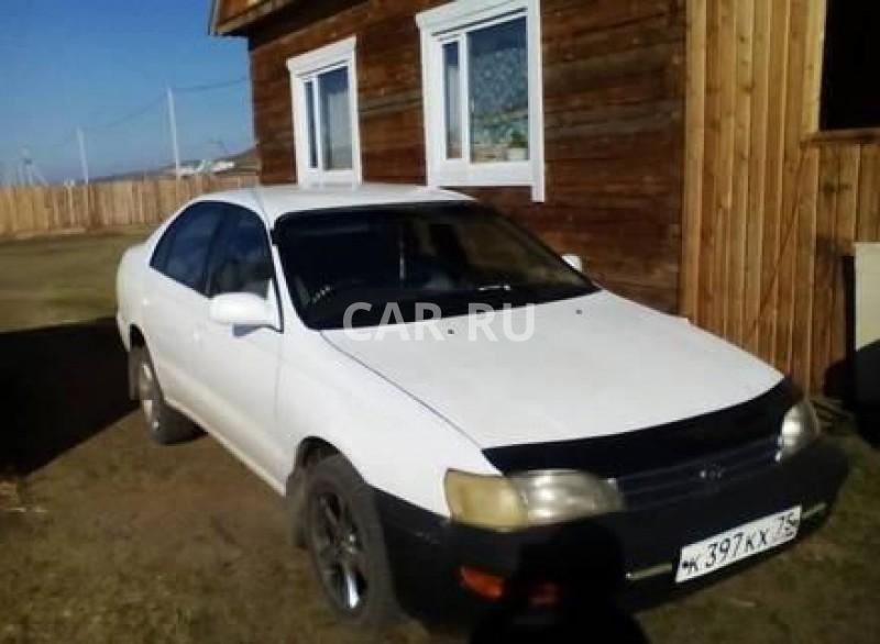 Toyota Corona, Агинское