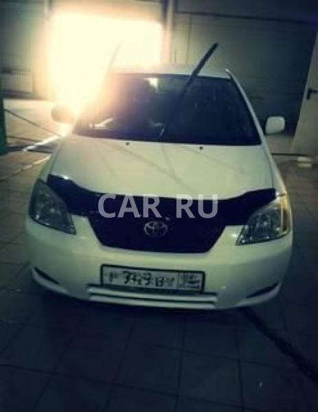 Toyota Corolla Runx, Барабинск