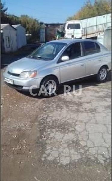 Toyota Echo, Барнаул